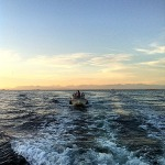 Boaters returning from Newcastle Island